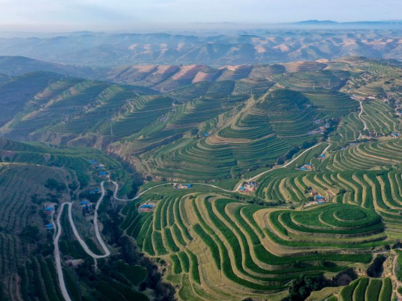 Marvelous terraced fields in Northwest China's Ningxia