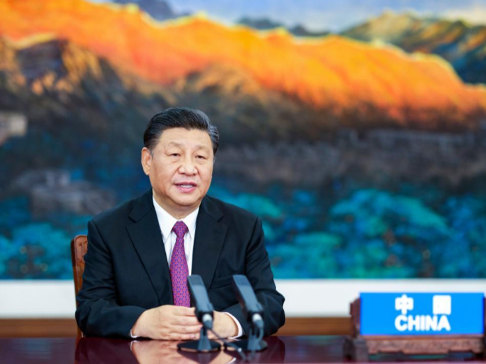Xi addresses APEC informal economic leaders' meeting via video link
