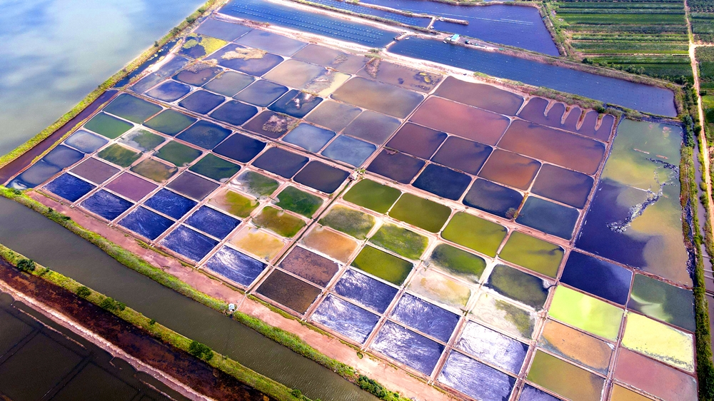 Colorful salt pans in East China's Shandong
