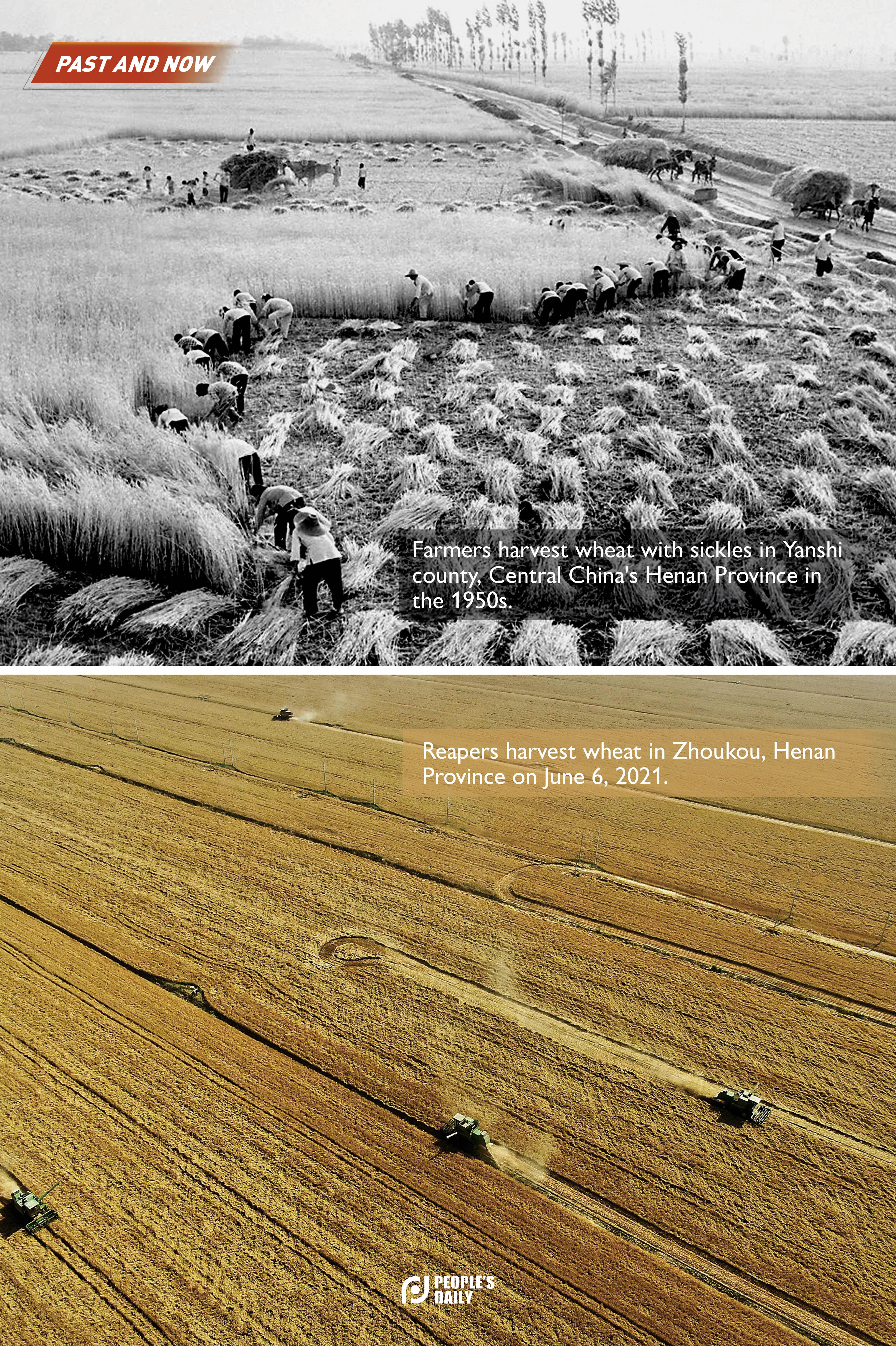 Agricultural modernization: Past and now