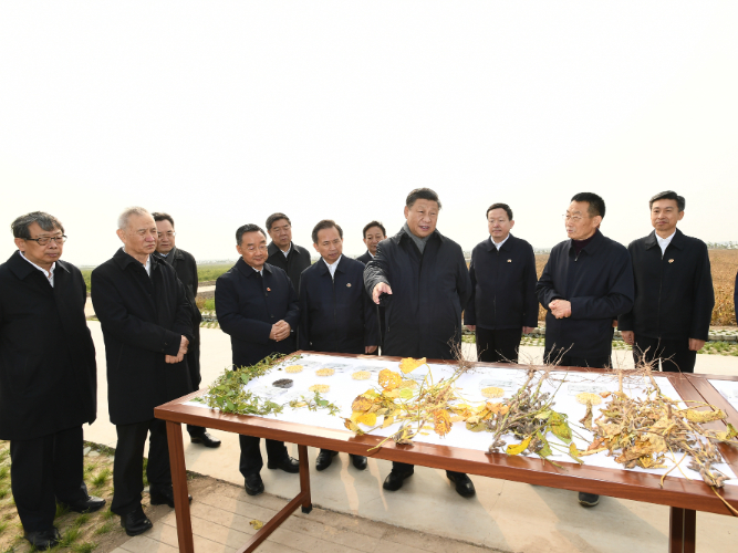 Xi continues inspection in east China's Dongying
