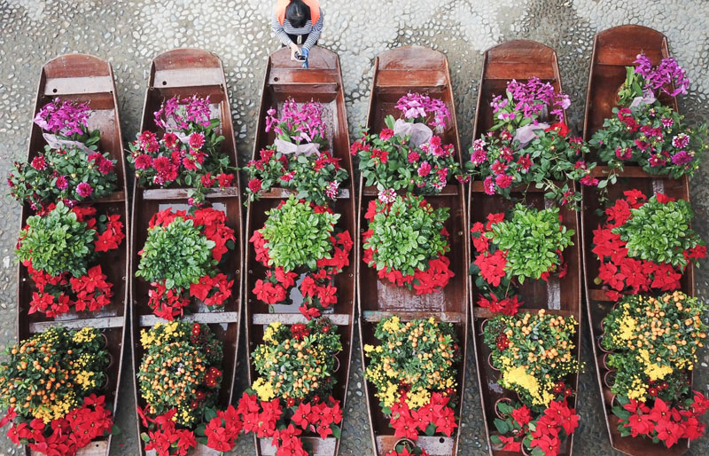 Floating Flower Market opens in south China's Guangzhou