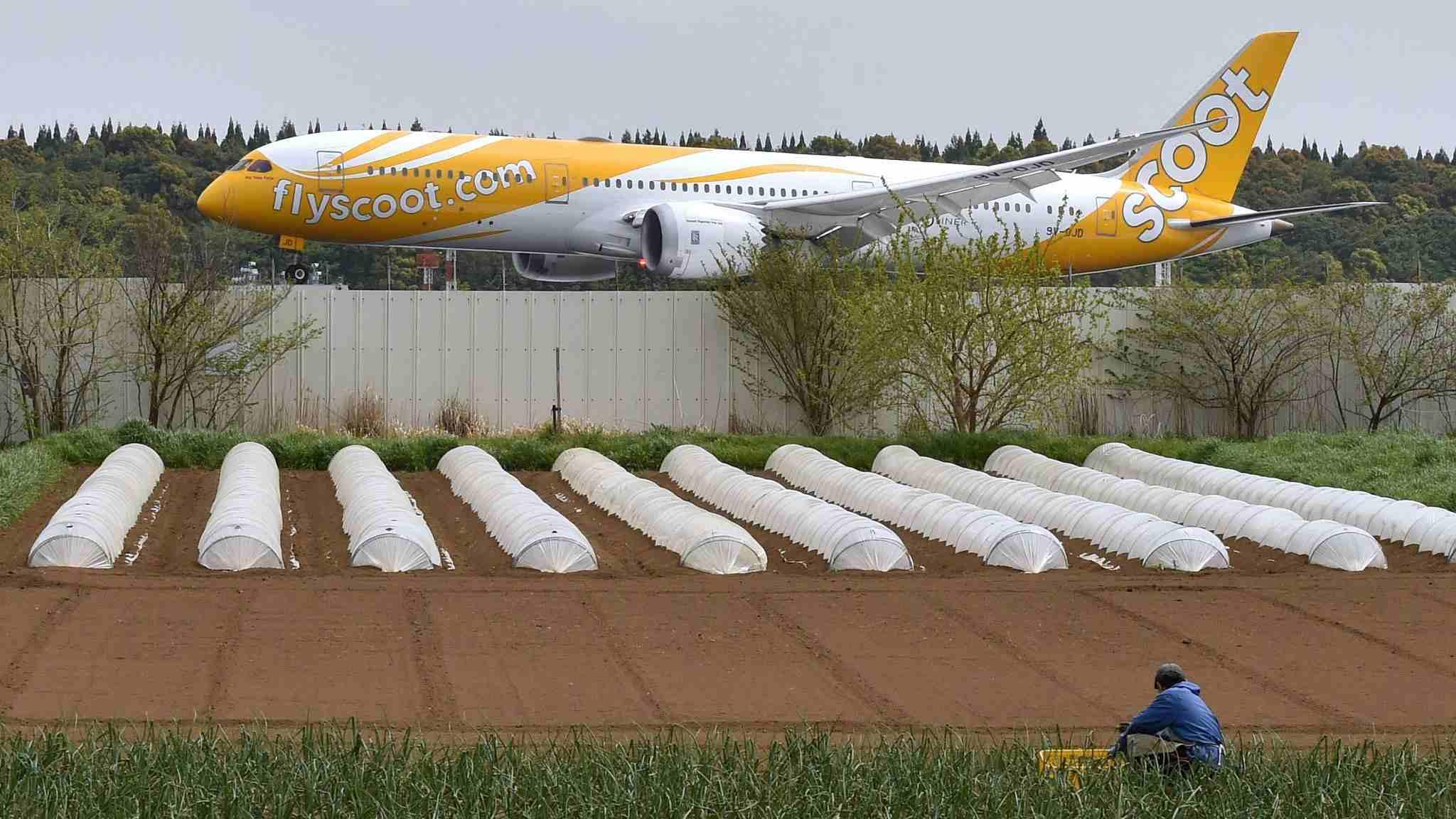 Japanese farmers battle Narita Airport for decades