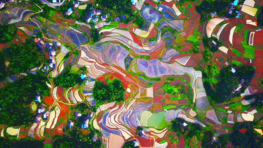 Images of Chongqing countryside win national competition