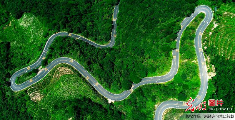 Beautiful country road in China's Anhui