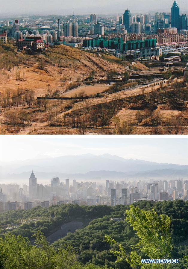 In pics: afforestation greens Yamalik mountains in China's Xinjiang