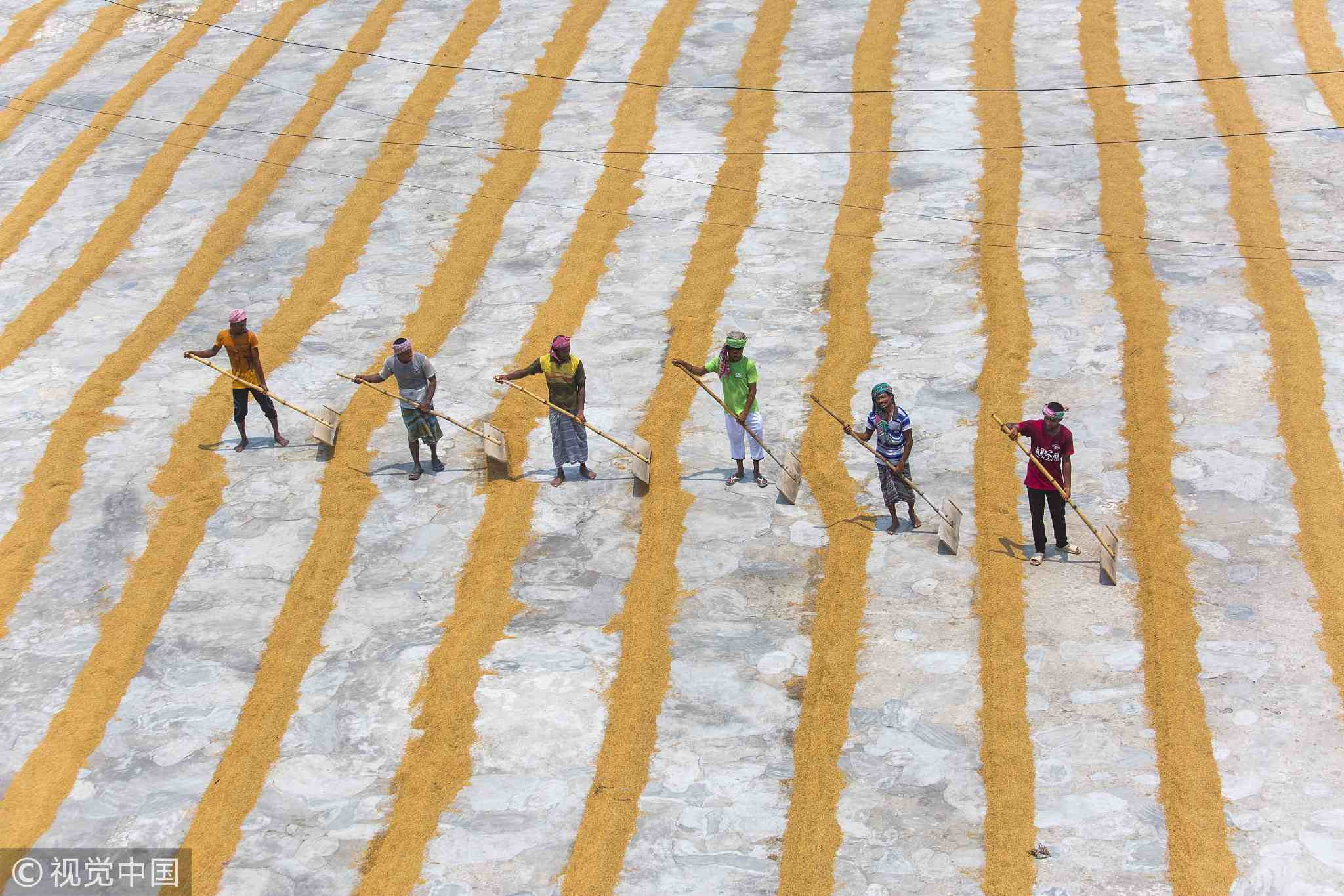 Bangladesh laborers toil all day for rice drying factory