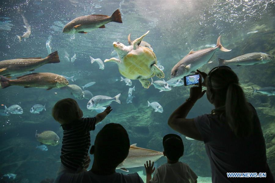In pics: Greece's CretAquarium