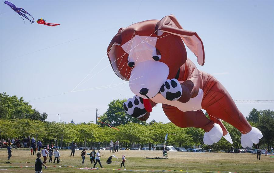 Pacific Rim Kite Festival held in Vancouver, Canada