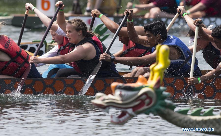 Over 100 teams take part in dragon boat race festival in Toronto