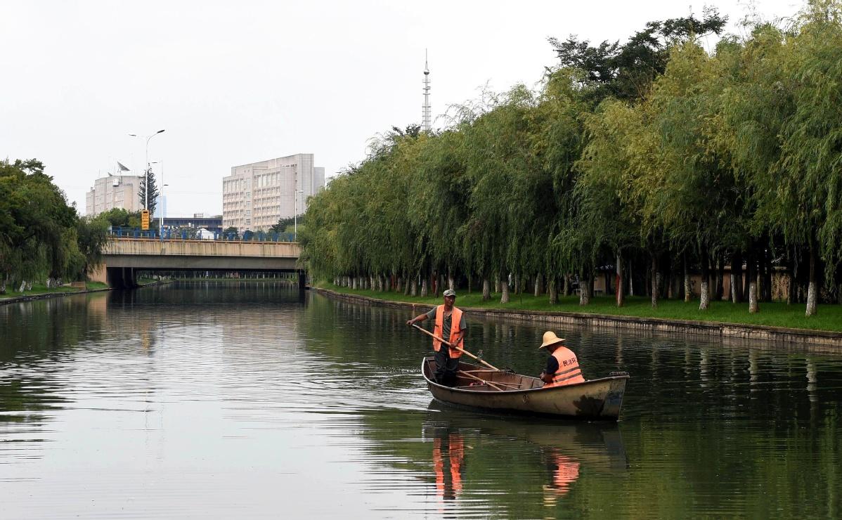 Yunnan sees progress in restoration of lake