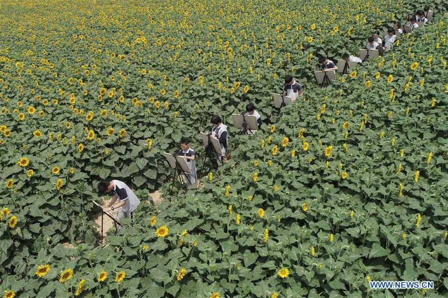Nangong of China's Hebei integrates tourism with agricultural industries