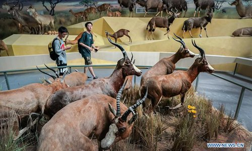 Kenneth E. Behring River and Life Museum starts trial operation in China's Hubei