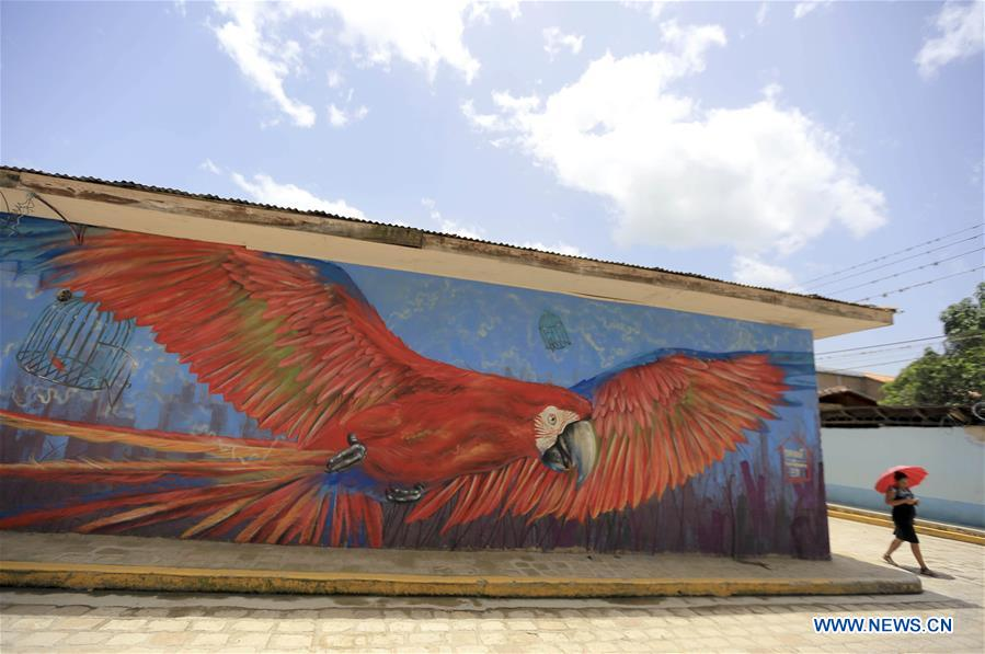 In pics: murals in municipality of San Juan de Flores, Honduras