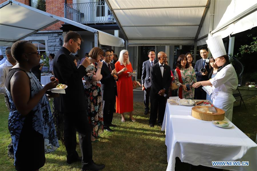 """Taste of China"" event held to promote Chinese food culture in Dublin, Ireland"
