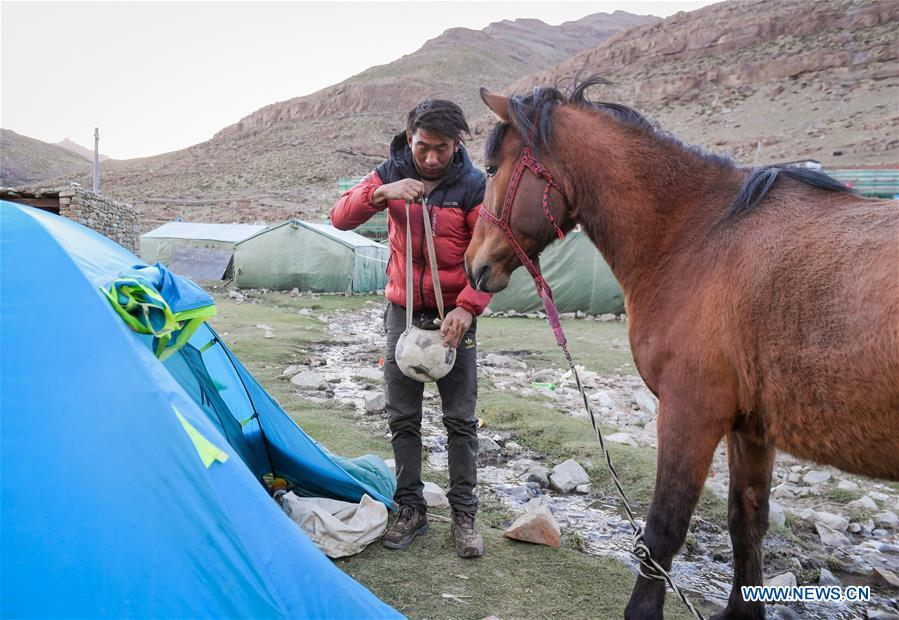 Tourism industry helps increase villagers' income in Ali Prefecture, China's Tibet