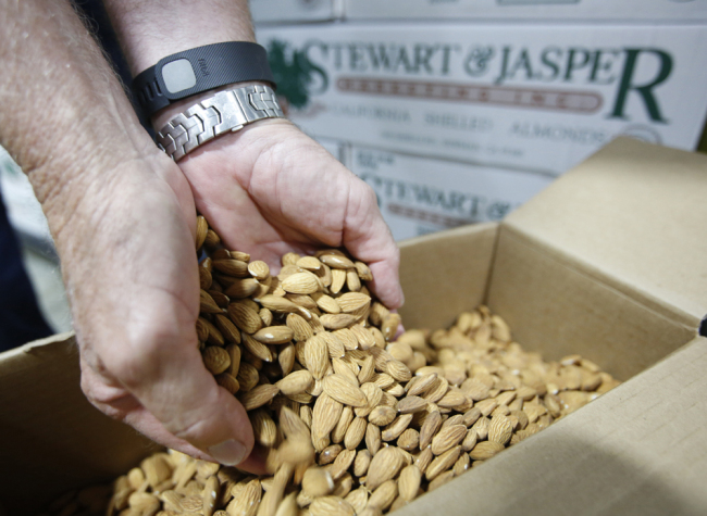 California's record almond harvest clouded by U.S.-China trade war