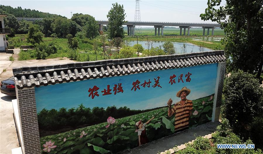Local government makes efforts to overhaul living environment of villages in E China