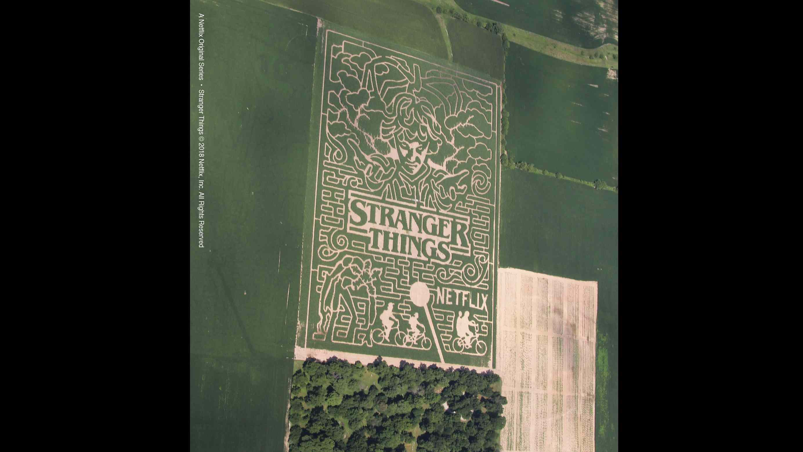 Farm creates a 20-acre Stranger Things corn maze