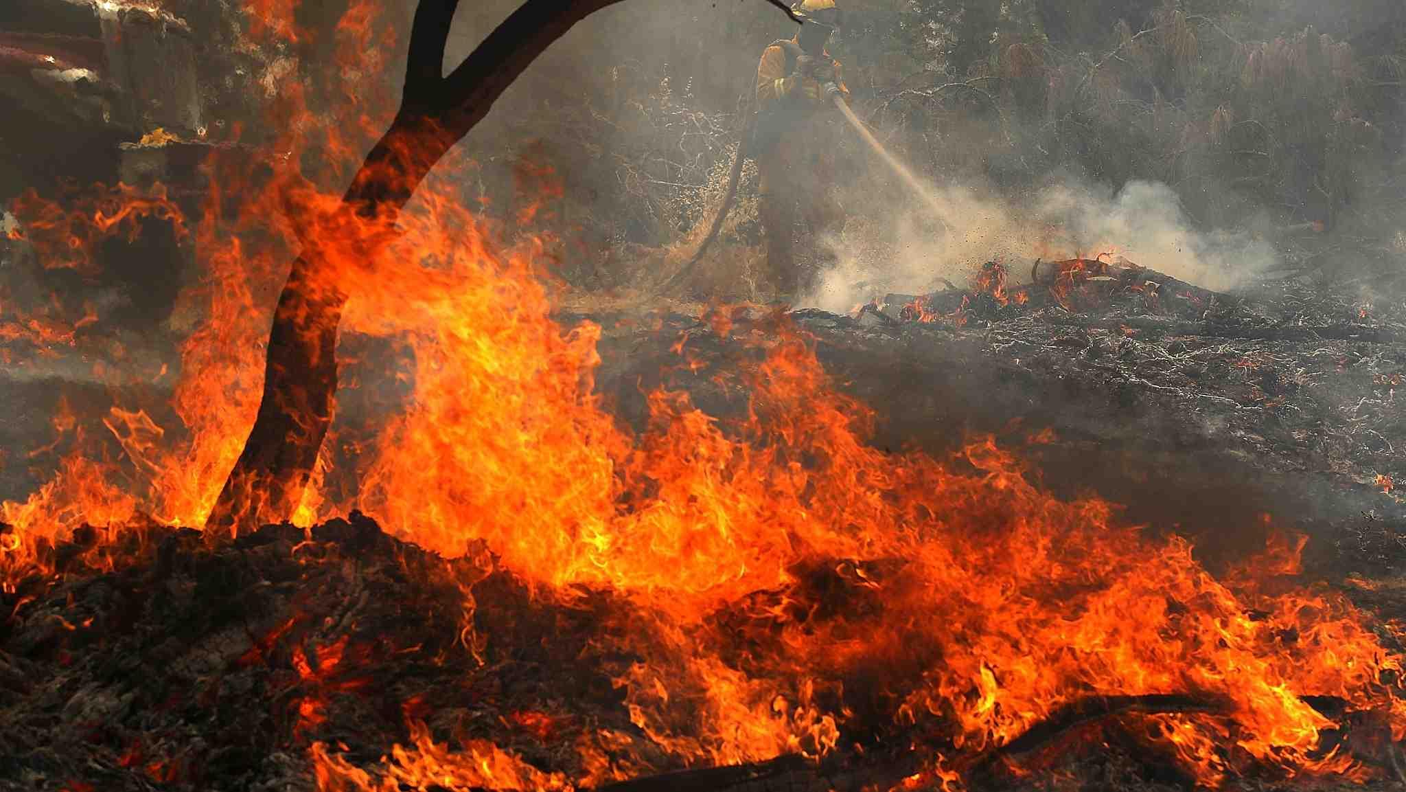 Wildfires blaze through Greece, Sweden, California