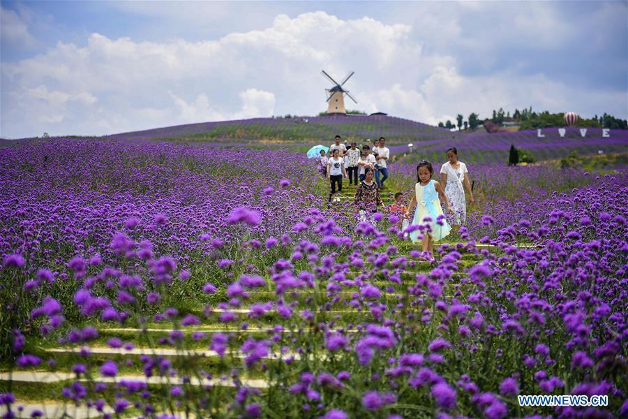 Tourists visit scenic spot in Tongzi, SW China's Guizhou