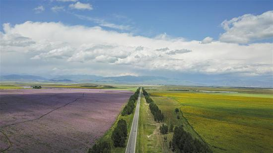 Aerial photo taken on Aug. 2, 2018 shows a road in Zhaosu County, northwest China's Xinjiang Uygur Autonomous Region. As an important link of the Silk Road Economic Belt, Xinjiang is speeding up the development of transportation and logistics to connect east and west.  (Xinhua/Hu Huhu)