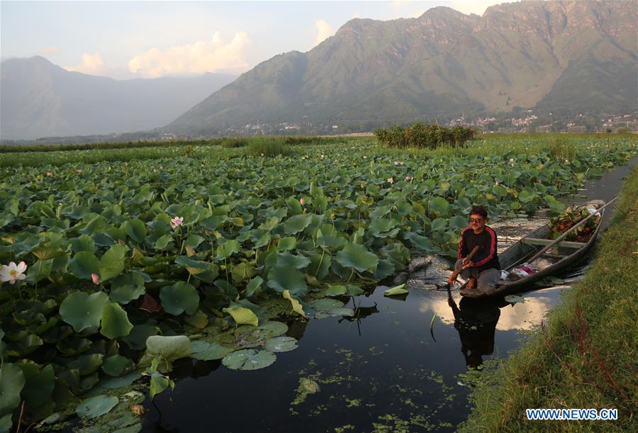 Daily life in Srinagar city, summer capital of Indian-controlled Kashmir