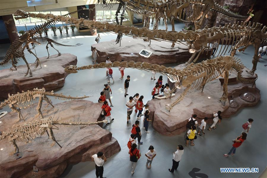 Museum tour for children organized in east China's Anhui