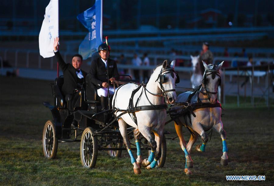 Horse-themed art week held in Hohhot, N China's Inner Mongolia