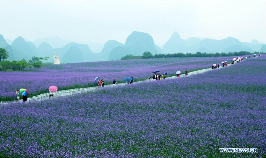People in China spend their Labor Day holiday in various ways