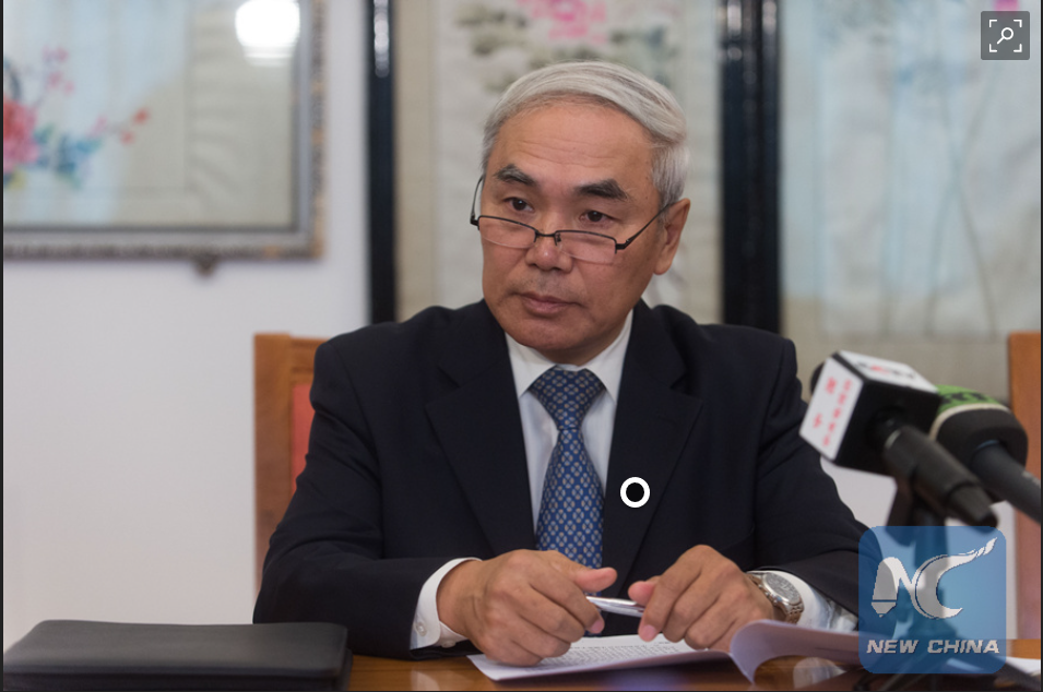 Chinese envoy urges political solution to Syrian issue