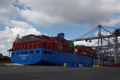 COSCO unveils latest fleet leader