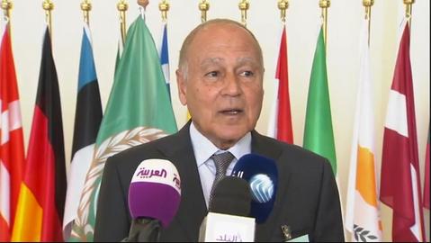 Arab League chief says turmoil in Arab world hurdles development