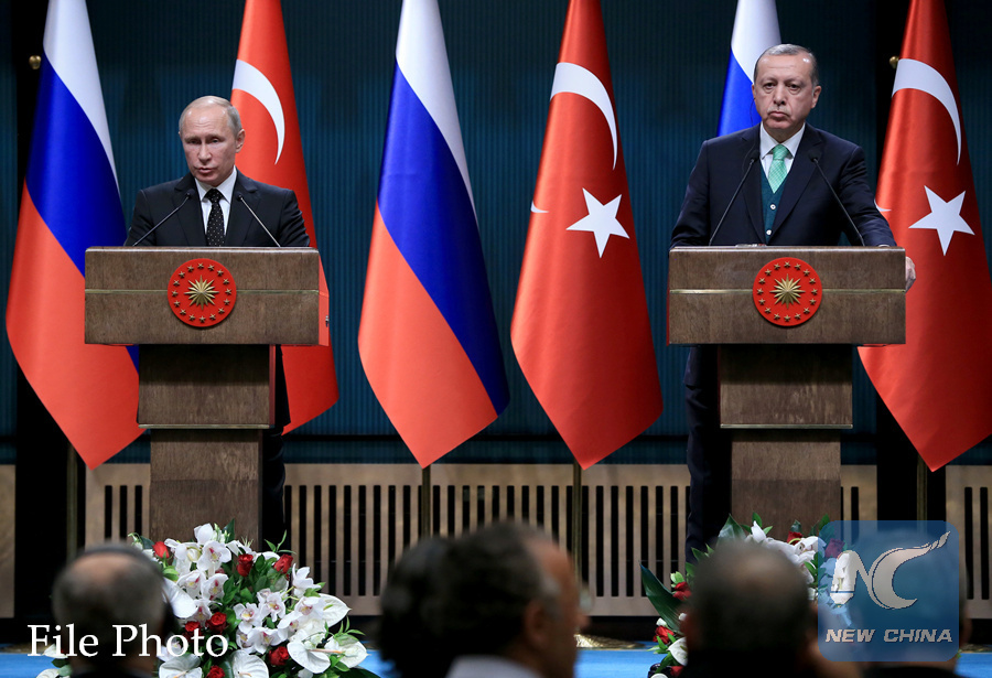 Putin, Erdogan hail outcome of Syrian talks in Sochi
