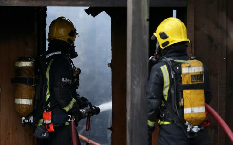 London Zoo fire leaves aardvark dead, meerkats missing