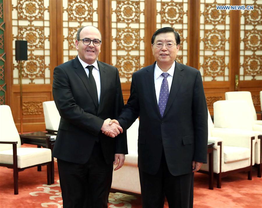 Chinese top legislator meets speaker of Morocco's House of Advisors