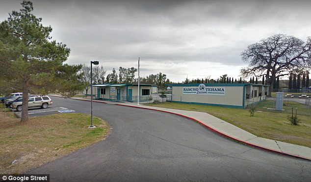 N. California shooting leaves 5 dead, multiple wounded