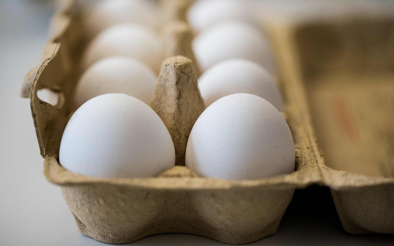 An egg a day may keep heart disease away: study