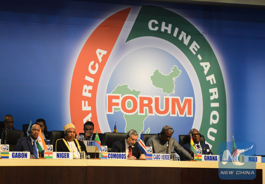 FOCAC Beijing summit to elevate China-Africa ties to a new level: Chinese FM