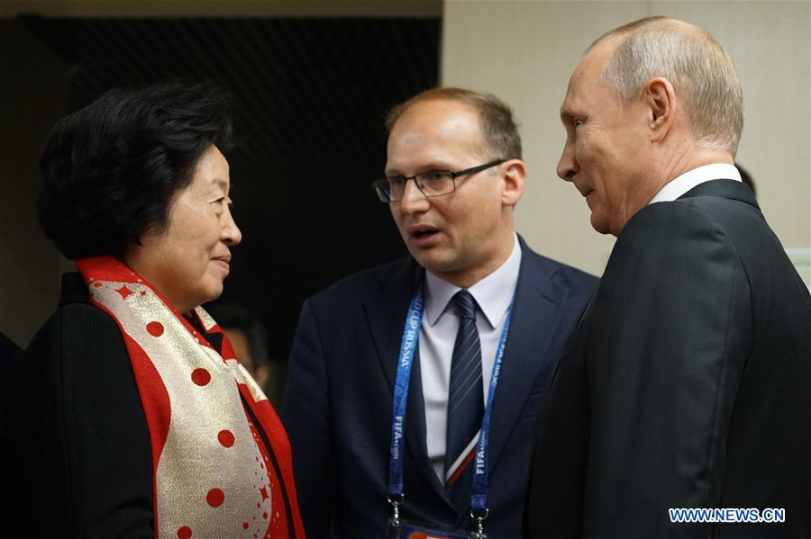 President Putin meets Chinese vice premier on cooperation