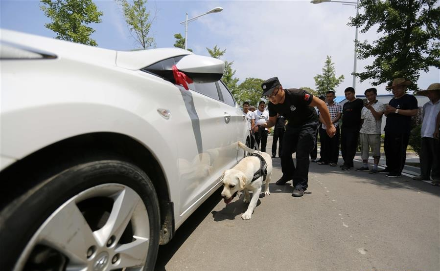 Ten sentenced to death for drug manufacturing, distribution in Guangdong