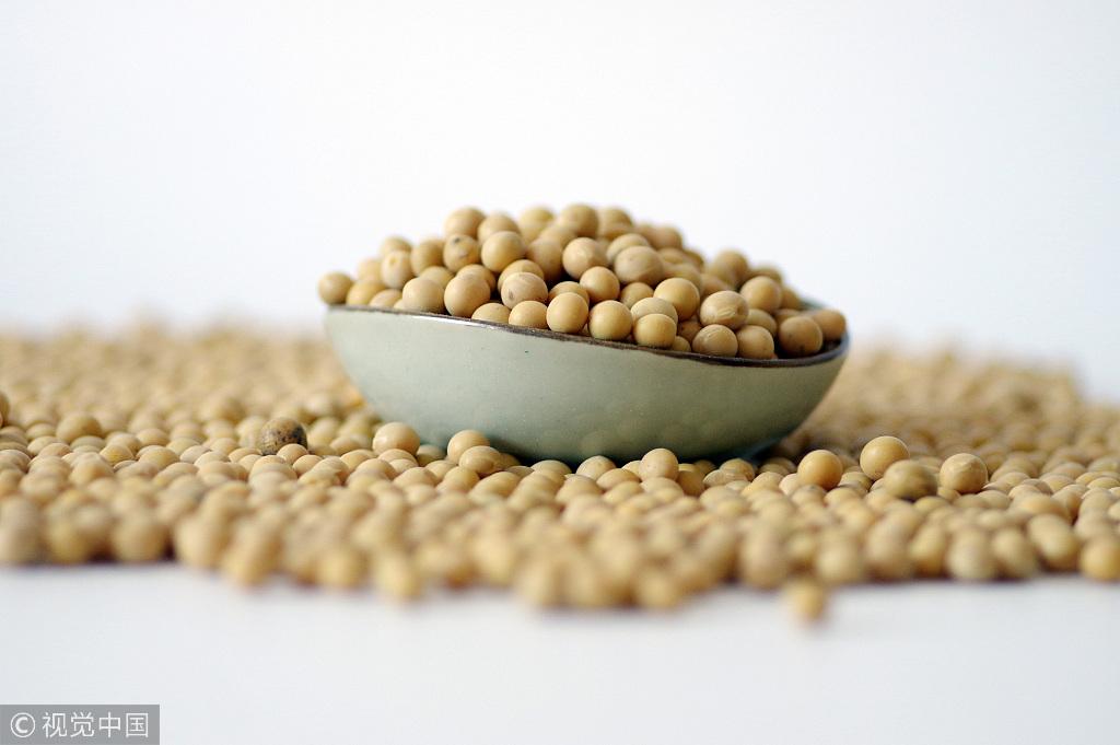 soybean.jpeg