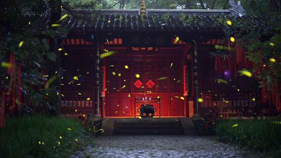 Reach for the stars: Fireflies lighten nightscape in Nanjing