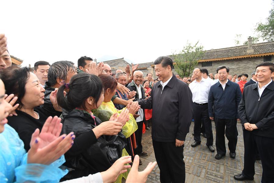 Xi stresses rural vitalization strategy