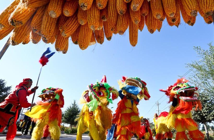 People celebrate harvest in NW China's Gansu