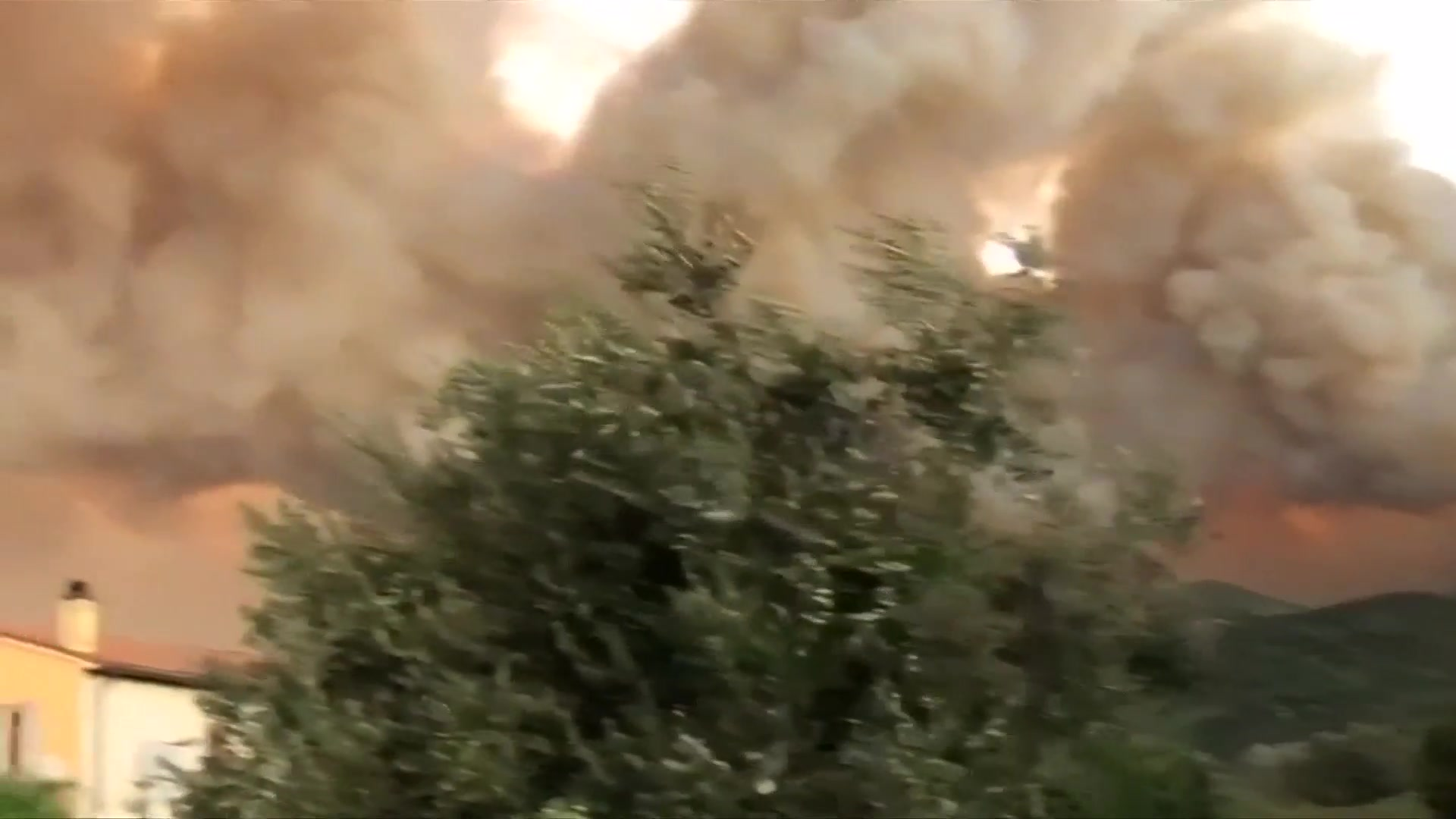 Video: Forest fire sweeps over Italy's Mount Serra