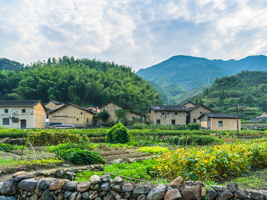 China releases five-year plan on rural vitalization strategy