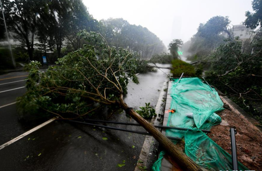 China allocates 210 mln yuan to typhoon-hit areas