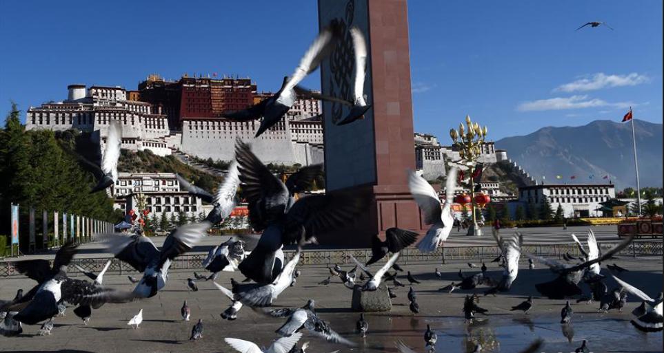 Tibetan-Mandarin bilingual law talents reach 1,000