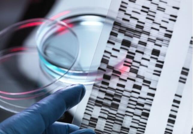 Stanford researchers relocate genes in cell with new gene-editing tool